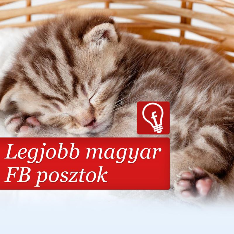 Mik voltak az utóbbi idők legjobb hazai Facebook bejegyzései?